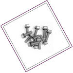 Stainless Steel Bin Bolts