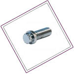 Hastelloy Ferry Cap Screws