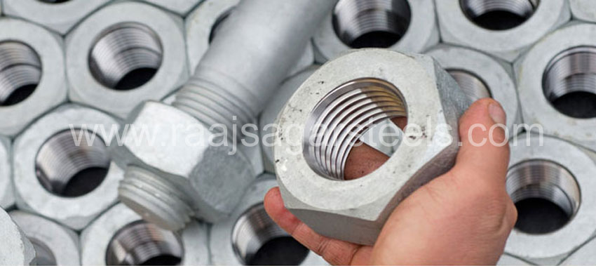 310S / 310H Stainless Steel Nuts